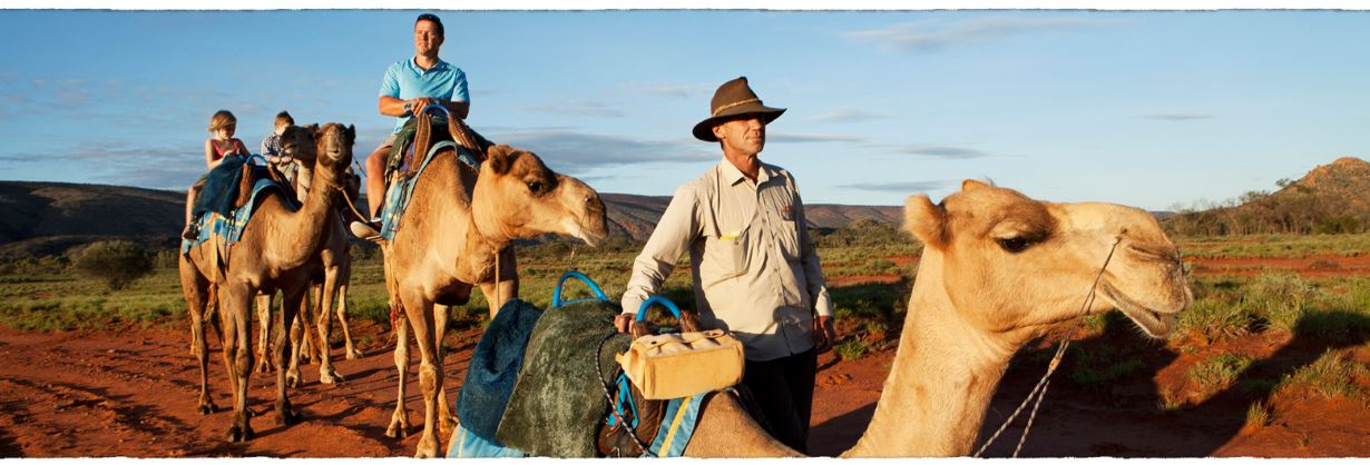 Tourism NT Camel tour