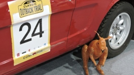 Scratch on the side of the Mustang and a blow up kangaroo