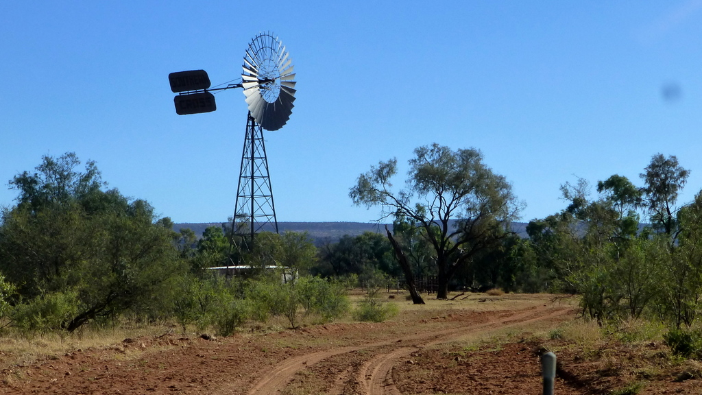 A pic of a windmill and cattle yards...