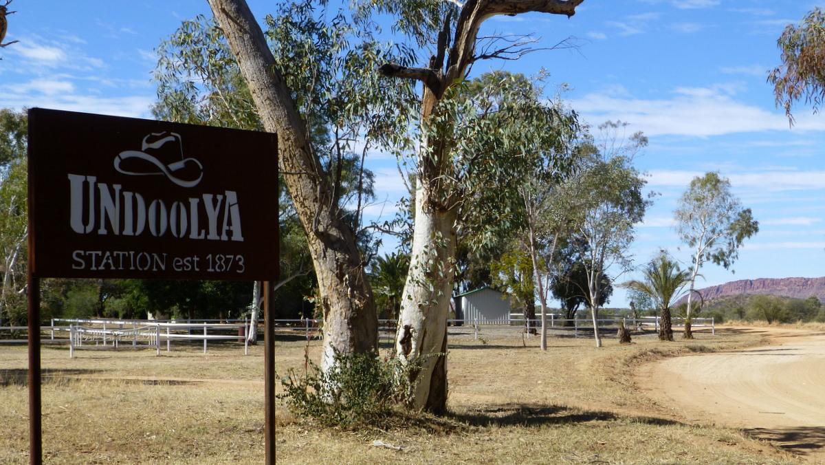 Road into Undoolya Station