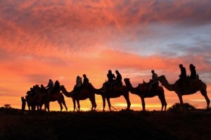 The camel to sunrise experience...