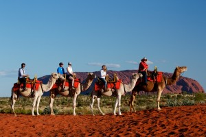 The camel to sunset experience...