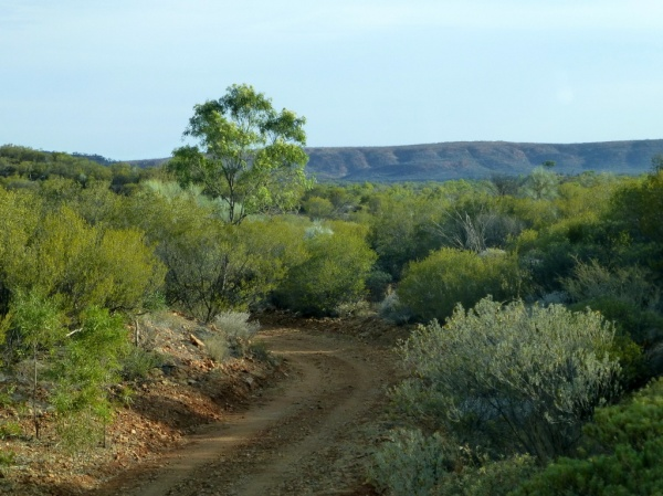 A gravel station track with the MacDonnell Ranges in the bakgound.