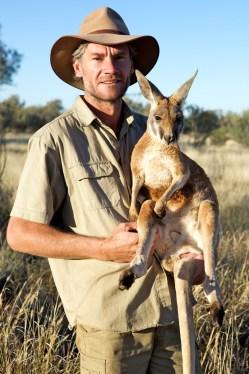 Brolga holding young male kangaroo