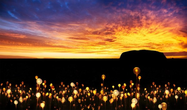 A sunset picture of Uluru with the field of Light exhibition in the foreground.