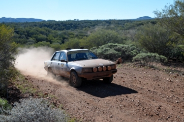 Tim and Bruce Shepherd, Peugeot 505 GTi