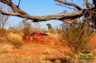 Mark Pickering/David Boddy - Datsun 240Z